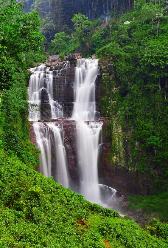 Beautiful waterfalls, Sri lanka and Waterfalls on Pinterest.