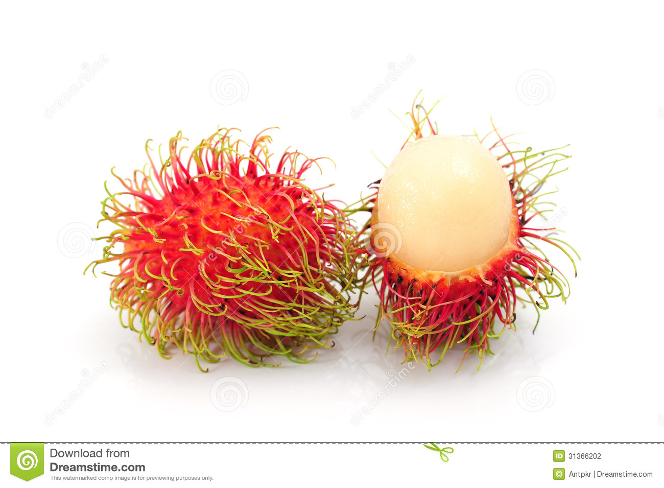 Rambutan Fruits Stock Photography.