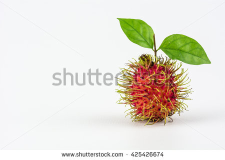 Rambutan Stock Images, Royalty.