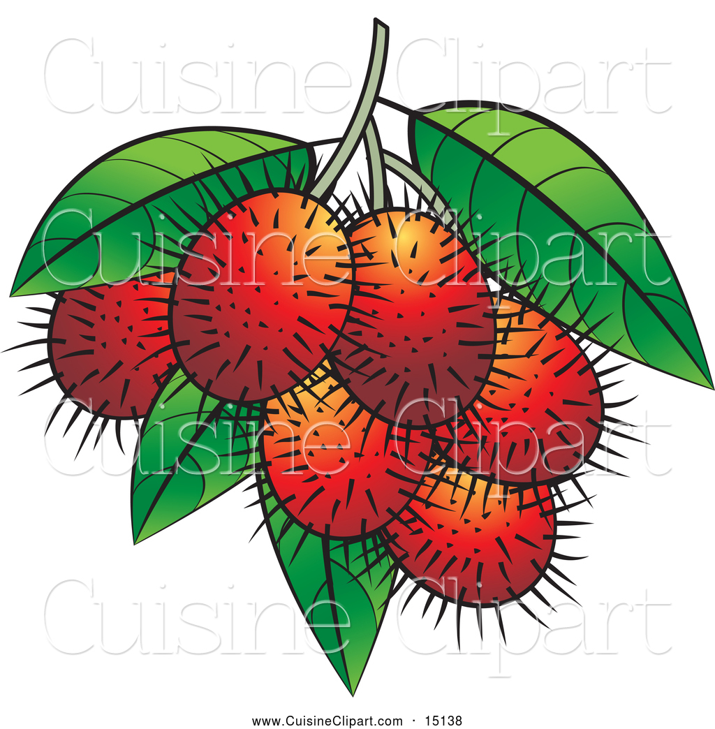 Cuisine Clipart of Ripe Rambutan Fruits by Lal Perera.