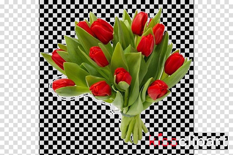 Lily Flower Cartoon clipart.