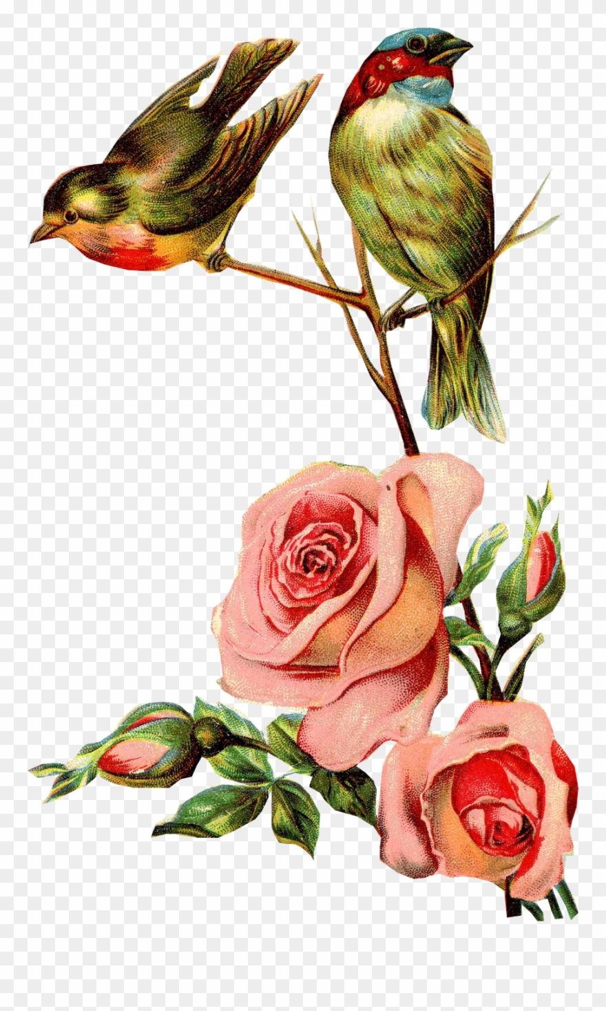 Resultado De Imagen Para Ramos De Flores Vintage Para.
