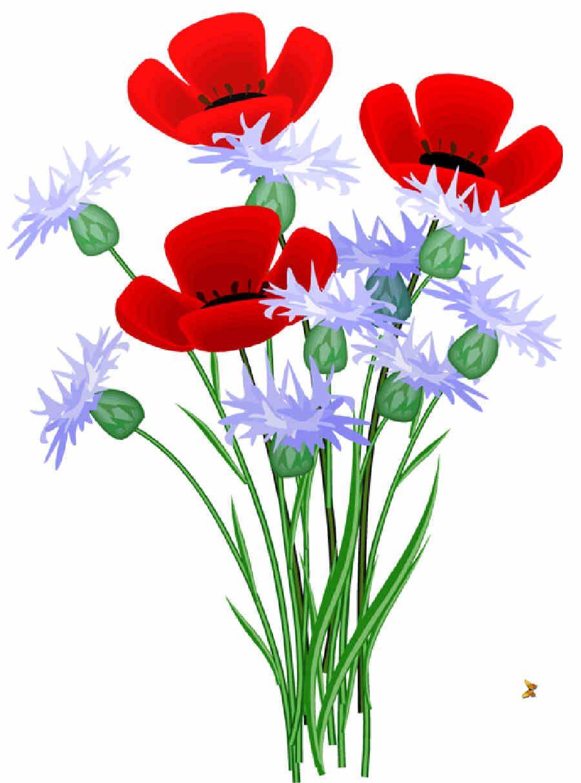 Flores de Primavera, flores, ramo de flores,.