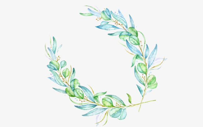 green,lace,frame,olive branch,background decoration,peace.