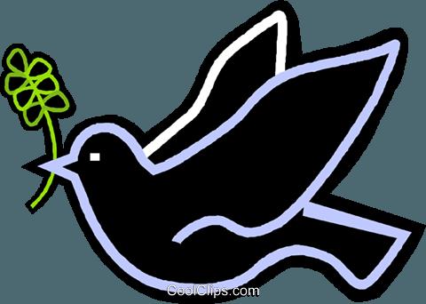 pomba com um ramo de oliveira na boca livre de direitos.