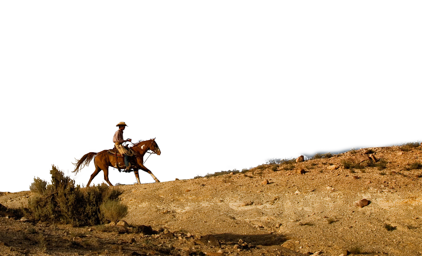 Cowboy & Dude Ranch Vacation.