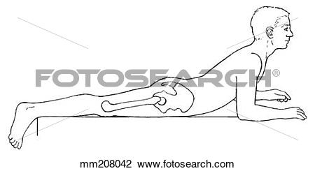 Clip Art of Range of motion, trunk extension mm208042.