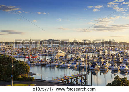 Picture of Auckland, Westhaven Marina and Mount Rangitoto.