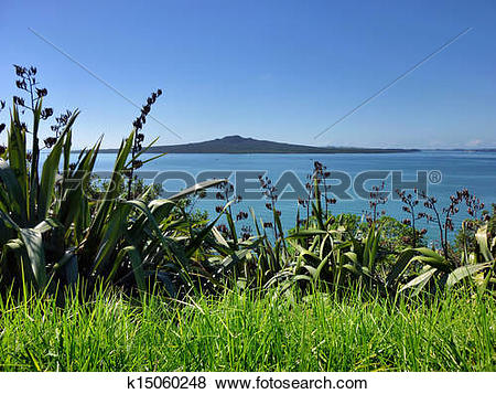 Pictures of View from Auckland's North Head to Rangitoto Island.