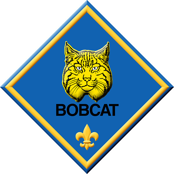 Cub scout ranks clipart.