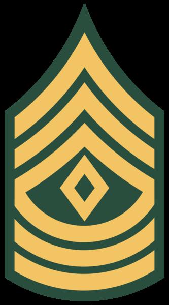 Us army ranks clipart.