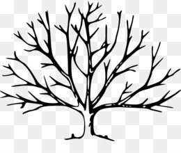 Oak Branch PNG and Oak Branch Transparent Clipart Free Download..