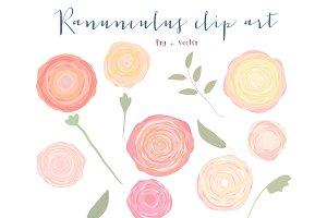 Ranunculus flower clipart Photos, Graphics, Fonts, Themes.