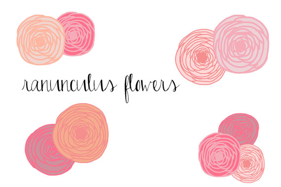 Ranunculus Flowers Clip Art Instant Download personal or.