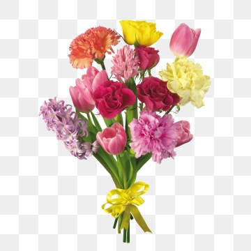 Ranunculus Png, Vector, PSD, and Clipart With Transparent.