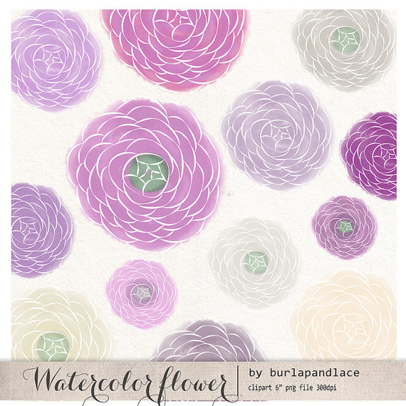 Items similar to Hand draw clipart flower cliparts, ranunculus.