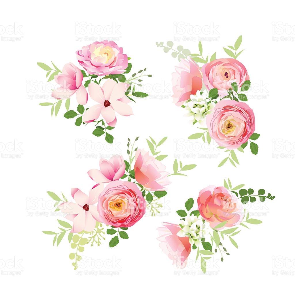 Hochzeit Blumensträuße Rosen Magnolie Ranunkelvektordesignelemente.
