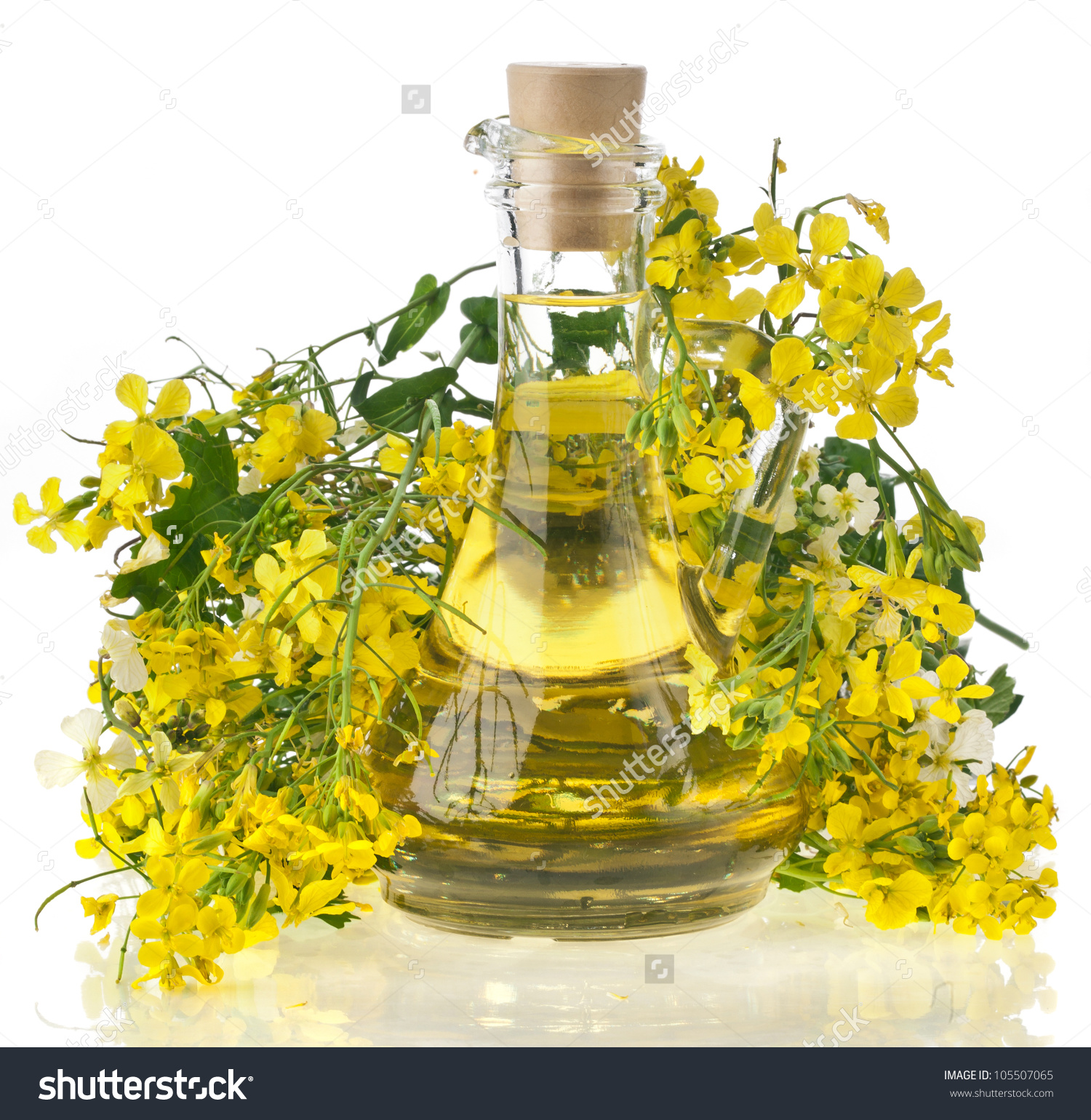 Flower Of A Rapeseed, Rape Blossoms With Bottle Decanter Oil.