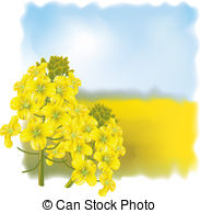 Rape flower Clip Art Vector Graphics. 27 Rape flower EPS clipart.