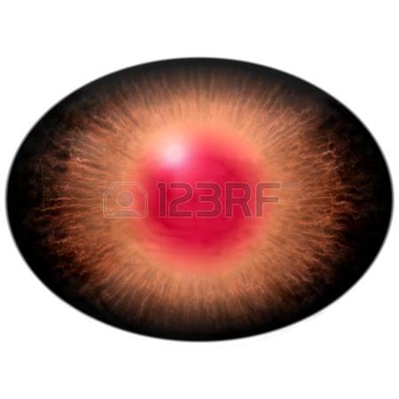 Eyes Clipart Large Pupil.