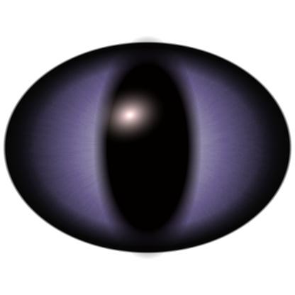 Raptoe Eye Clipart.