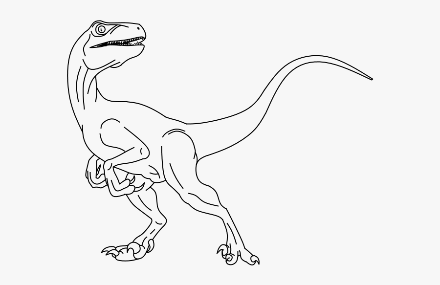Drawing Of Raptor , Free Transparent Clipart.