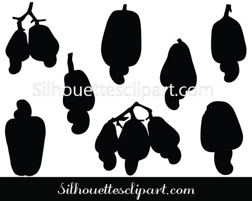 Cashew Nut Fruits Vector Graphics Download.