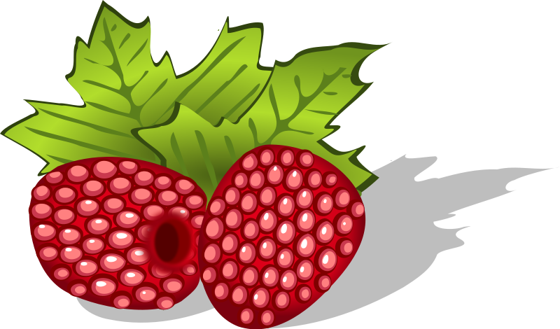 Free to Use & Public Domain Raspberry Clip Art.
