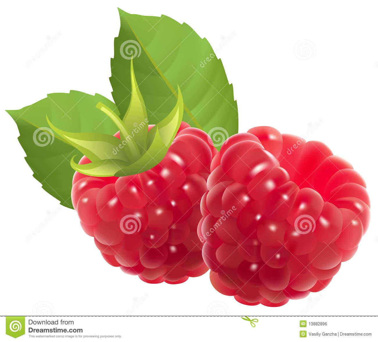 Raspberry Clipart.