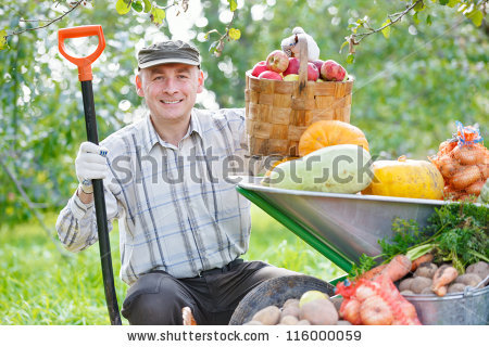 Agriculture work free stock photos download (67,727 Free stock.