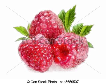Raspberry Illustrations and Clipart. 7,129 Raspberry royalty free.