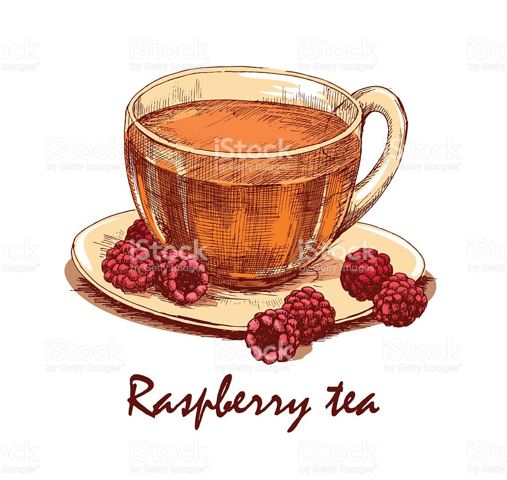 Colored Hand Drawn Cup Of Raspberry Tea stock vector art 539367986.