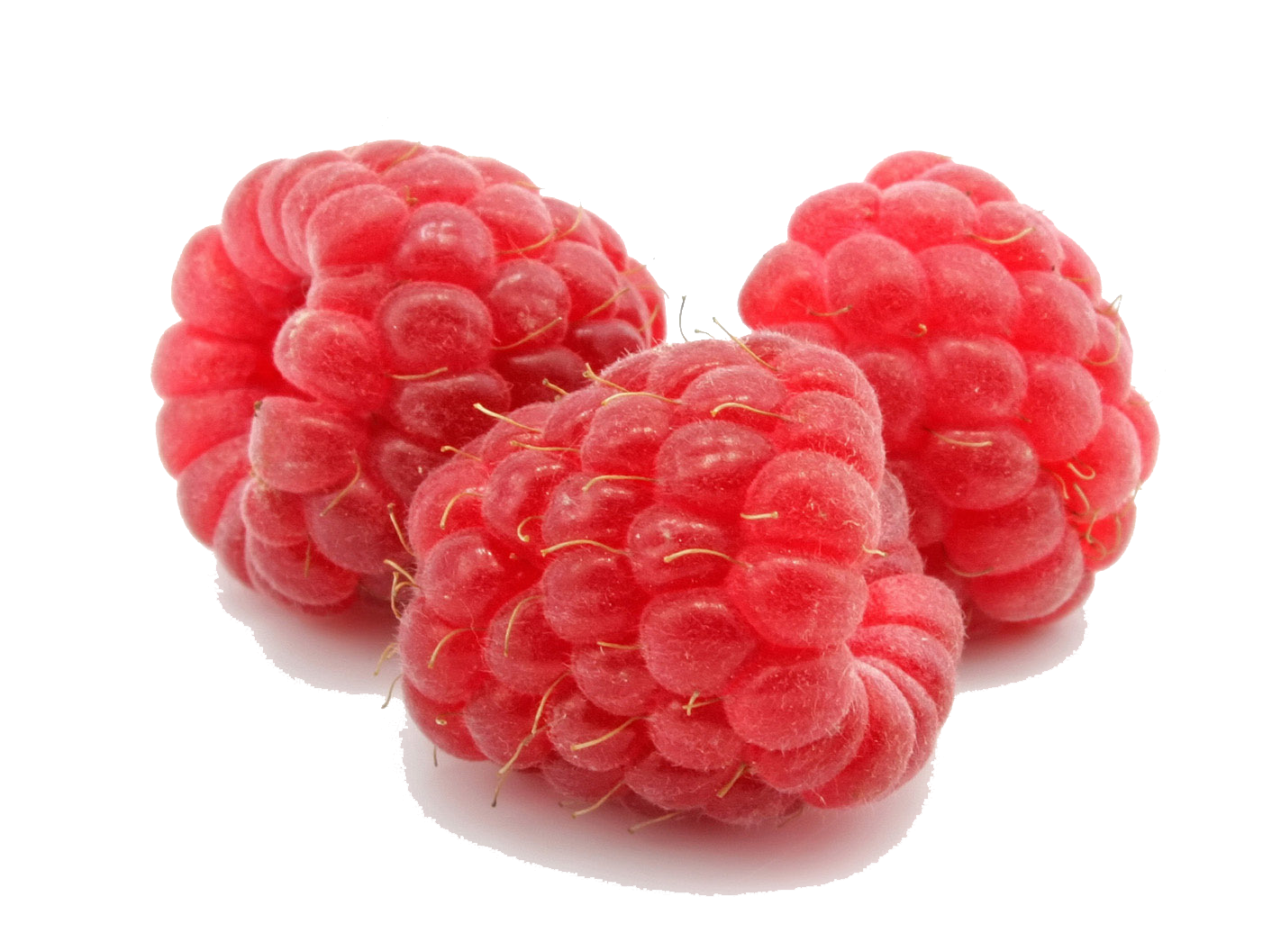 Raspberry PNG Images Transparent Free Download.