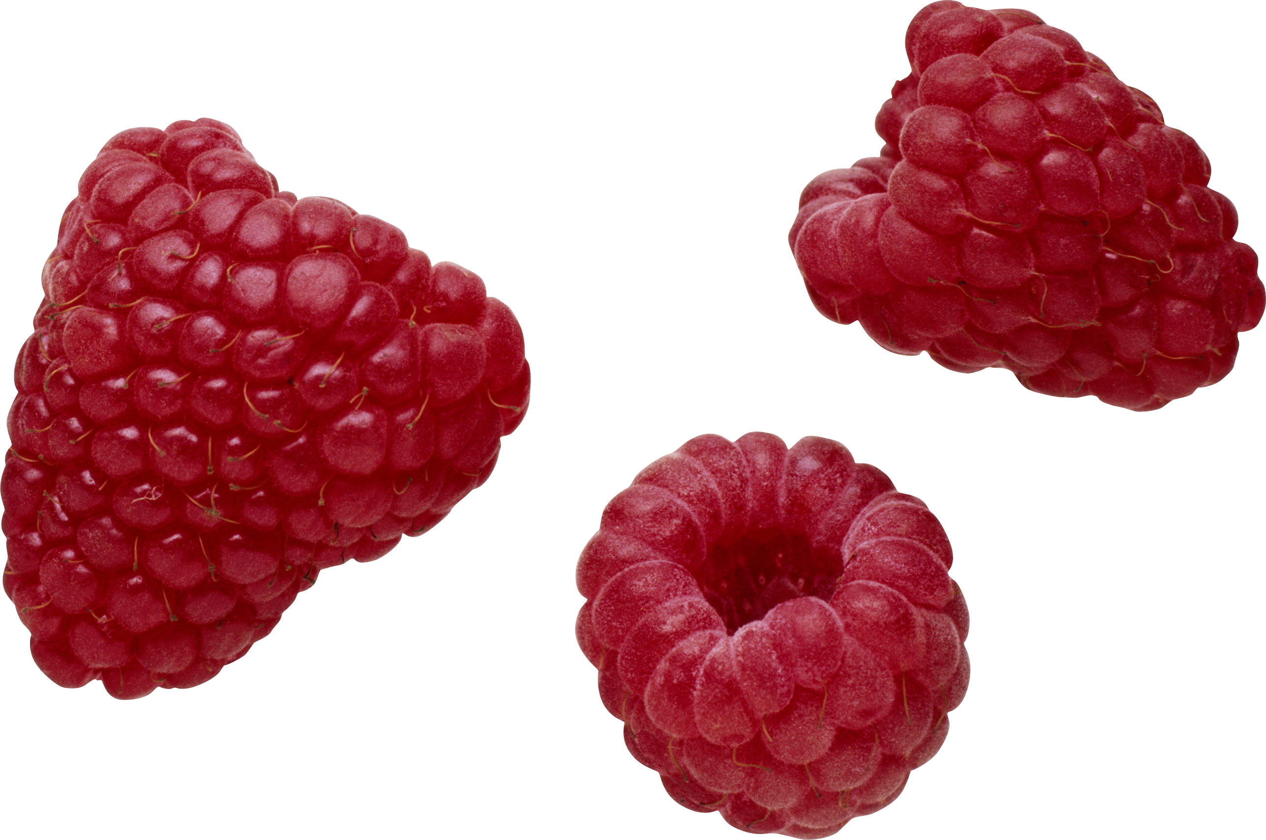 Raspberry PNG images free pictures download.