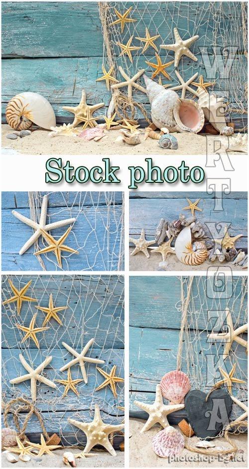 Marine backgrounds, fishing nets and seashells.