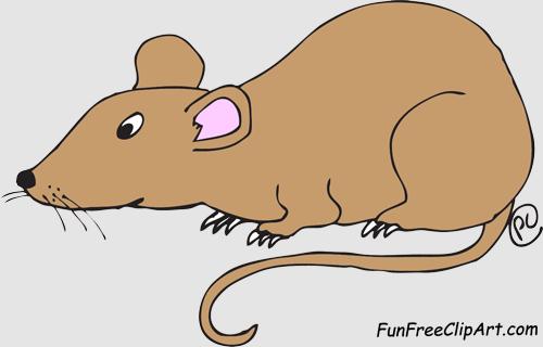 Rat Clip Art & Rat Clip Art Clip Art Images.