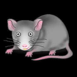Rat Png Clipart.