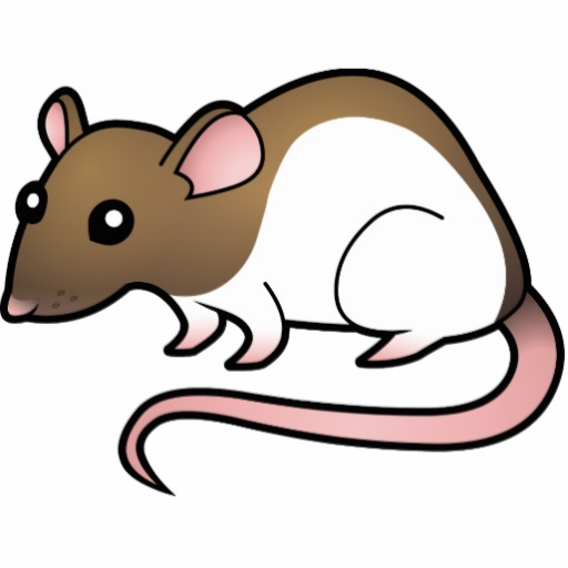 Rat Rodent Pest Mouse Animal Png Image Wood.