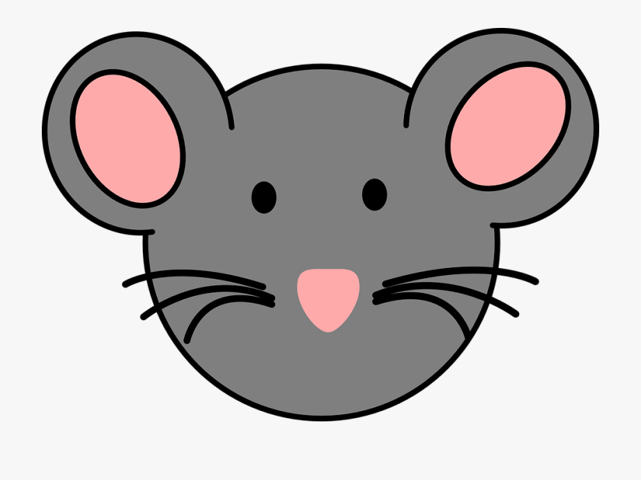 Rat Clipart Rat Face.