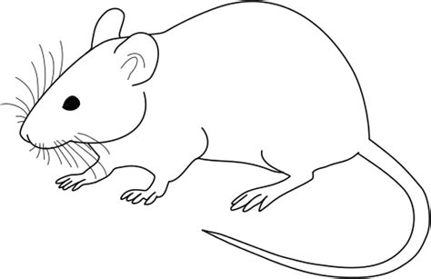 Free Rat Clipart Black And White, Download Free Clip Art.