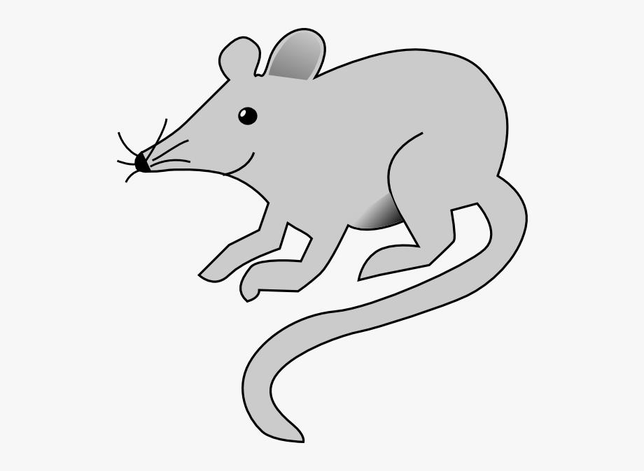 Free Rat Clip Art.