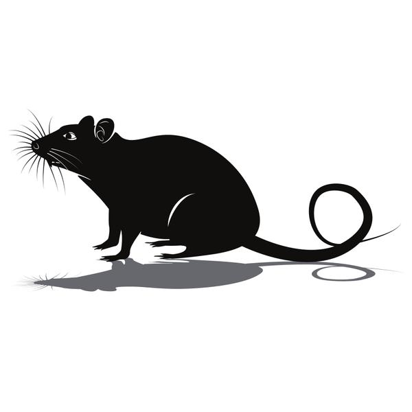 Rat silhouette clip art.