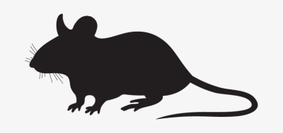 Rat Silhouette Png Mouse Silhouette PNG Image.