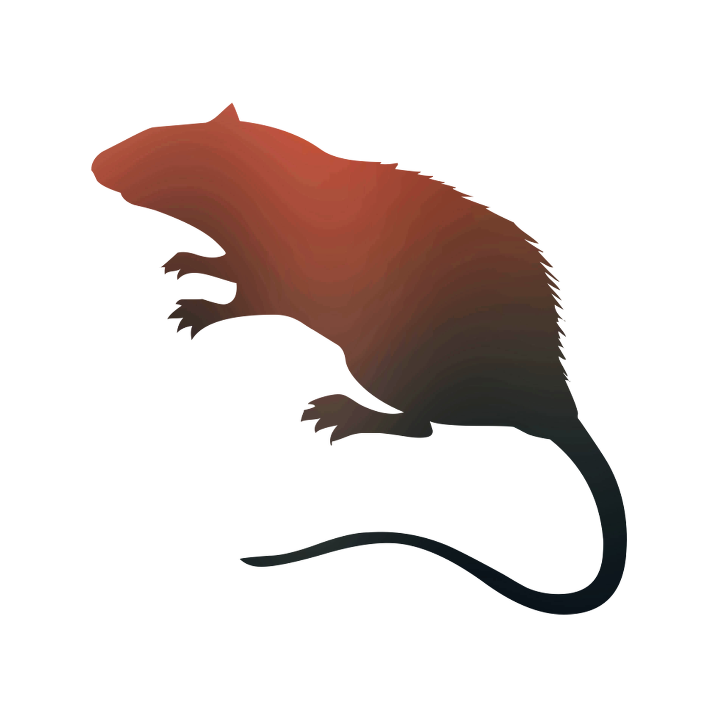 Rat Vector graphics Royalty.