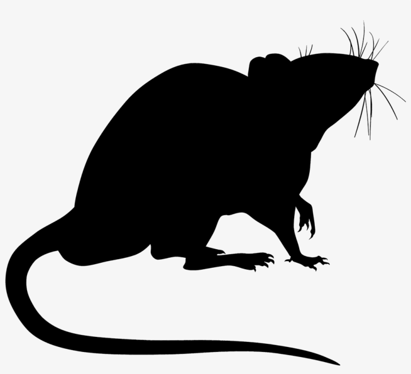 Rat Silhouette Png PNG Images.