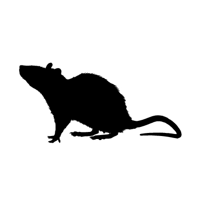 Rat Silhouette Png (108+ images in Collection) Page 1.