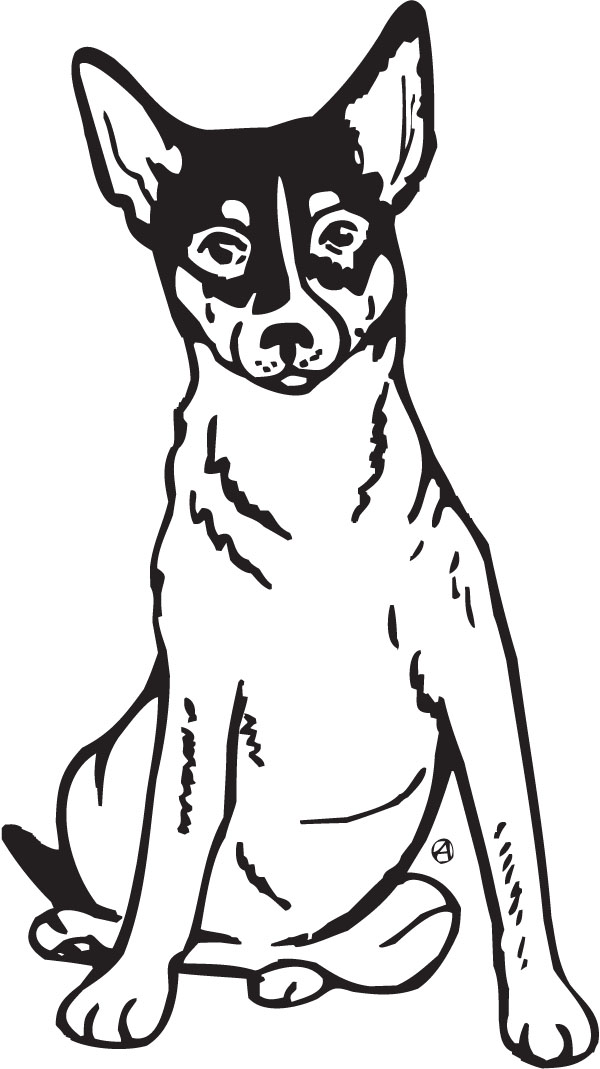 Rat terrier clipart.
