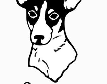 Custom rat terrier.