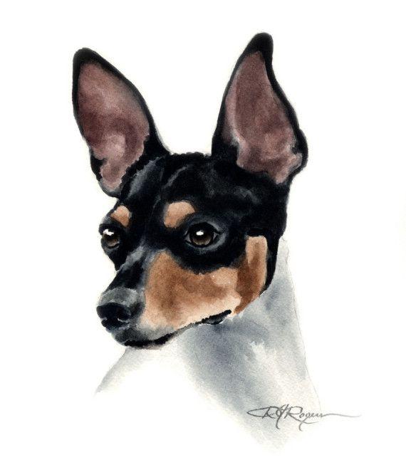 1000+ images about Rat Terrier Art on Pinterest.