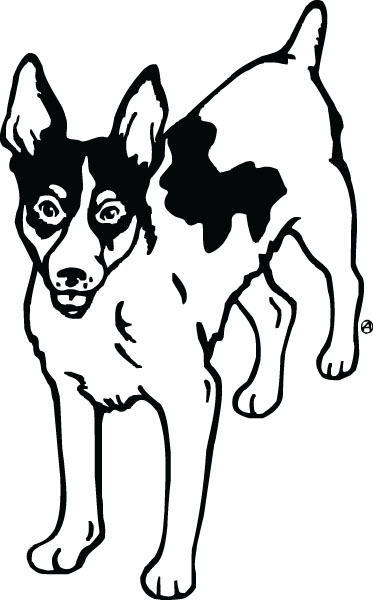Rat Terrier Dog Breed Clip Art For Engraved Products.